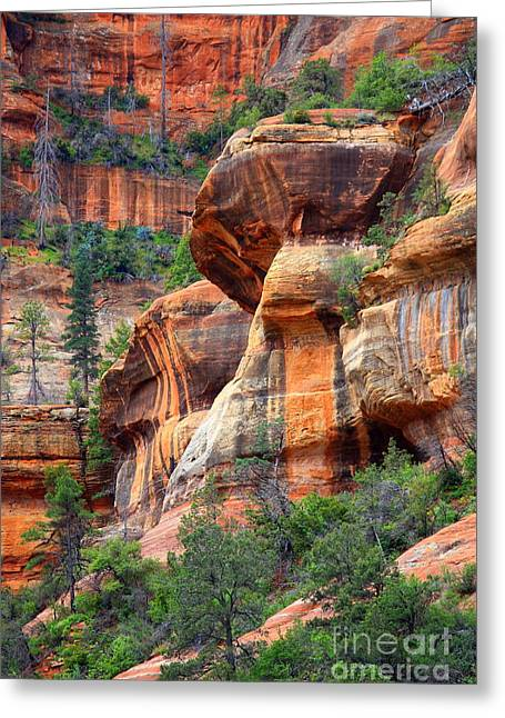 Red Sandstone Greeting Cards - Sedona Stripes Greeting Card by Carol Groenen