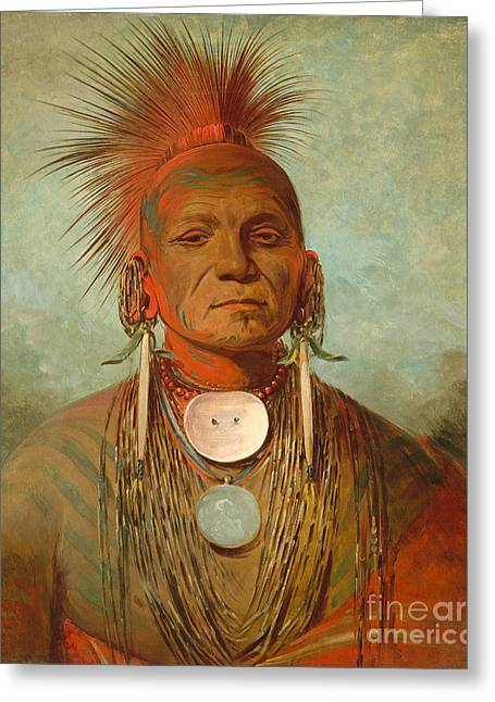Face Paint Greeting Cards - See non ty a an Iowa Medicine Man Greeting Card by George Catlin