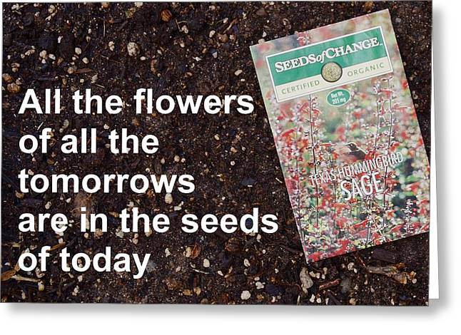 Local Food Greeting Cards - Seeds of Today Greeting Card by Jon Simmons