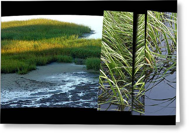 Abstract Beach Landscape Greeting Cards - Seeing Seeing Greeting Card by Susie Capezzone