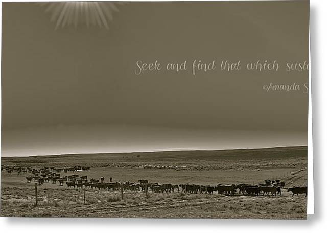Cattle Greeting Cards - Seek and find that which sustains you Greeting Card by Amanda Smith