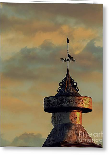 Best Sellers -  - Weathervane Greeting Cards - Seeking Direction Greeting Card by Christina Williams