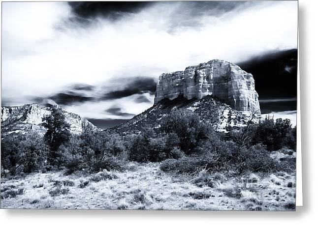Coconino National Forest Greeting Cards - Seeking Shelter Greeting Card by John Rizzuto