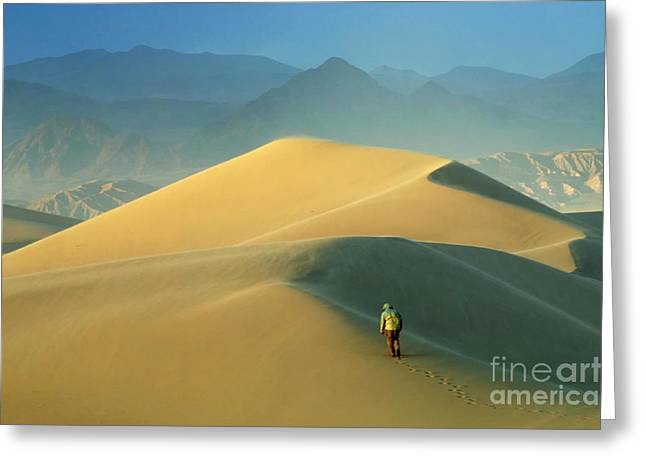 Seeking Solitude  Greeting Card by Bob Christopher
