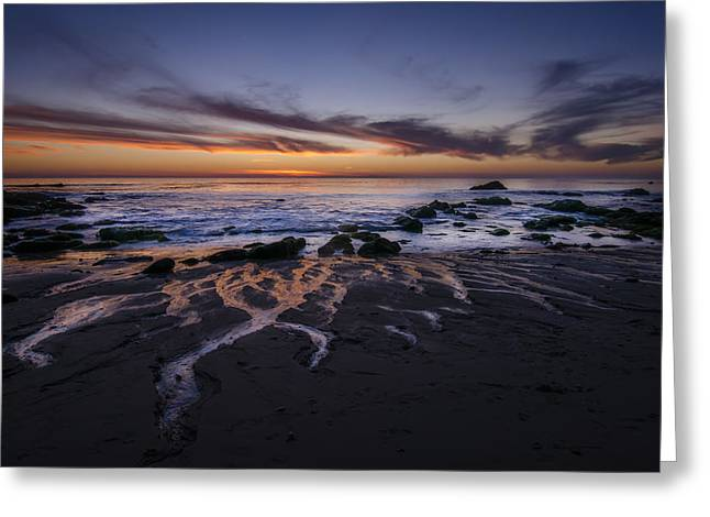 California Beach Greeting Cards - Seep Greeting Card by Sean Foster