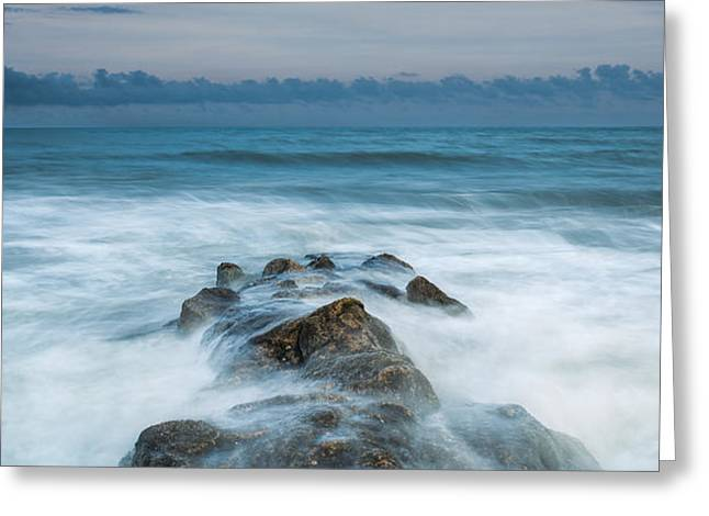 Saltlife Greeting Cards - Seeping In Greeting Card by Bill Cantey