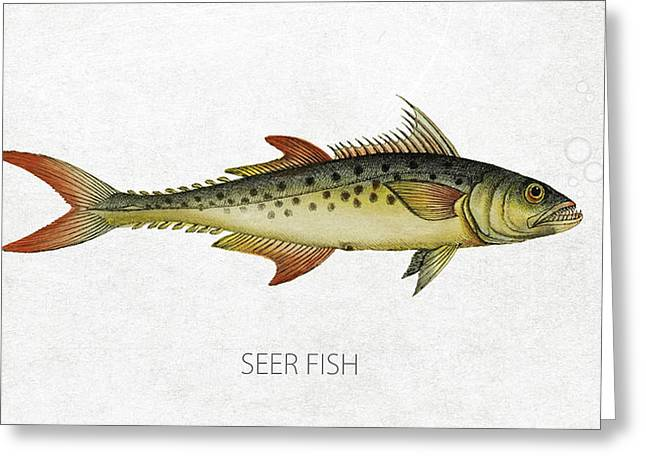 Mackerel Greeting Cards - Seer Fish Greeting Card by Aged Pixel