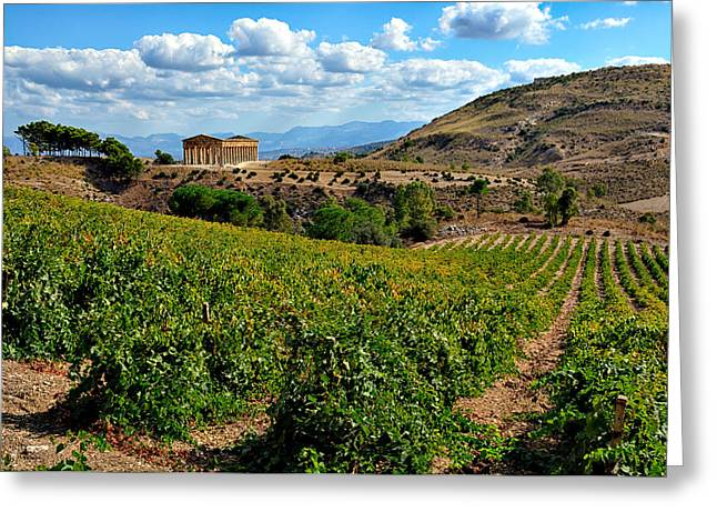 Greek Temple Greeting Cards - Segesta Sicily Greek Temple Greeting Card by Alan Toepfer