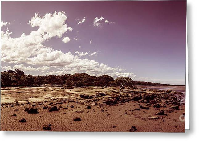 Deception Beach Greeting Cards - Selenium toned rocky beach landscape Greeting Card by Ryan Jorgensen