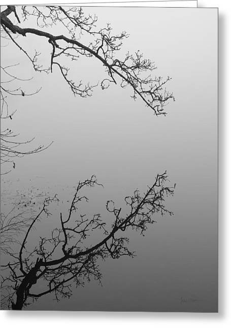 Grafton Ma Greeting Cards - Self-Reflection Greeting Card by Luke Moore