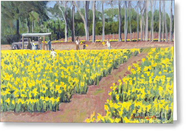 Head Stand Paintings Greeting Cards - Selling Daffodils Greeting Card by Candace Lovely