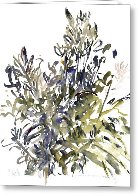 Tasteful Art Greeting Cards - Senecio and other plants Greeting Card by Claudia Hutchins-Puechavy