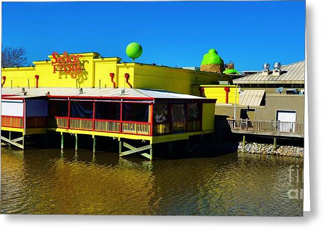 Humorous Greeting Cards Greeting Cards - Senor Frogs In Myrtle Beach Greeting Card by Bob Sample