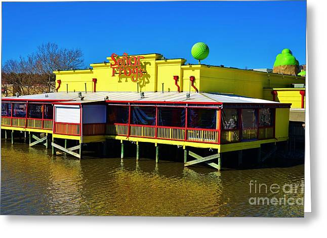 Senor Frogs Myrtle Beach Water Front View Greeting Card by Bob Sample