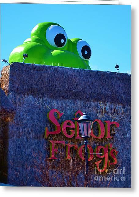 Senor Greeting Cards - Senor Frogs Greeting Card by Bob Sample