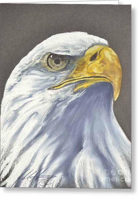 Bald Eagle Pastels Greeting Cards - Sentinal Greeting Card by John Huntsman