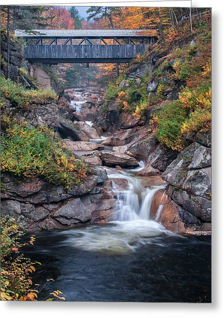 Nature Scene Greeting Cards - Sentinal Pine Bridge - White Mountains National Forest Greeting Card by Thomas Schoeller