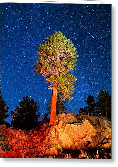 Andromeda Galaxy Greeting Cards - Sentinel Greeting Card by Bryce Bradford
