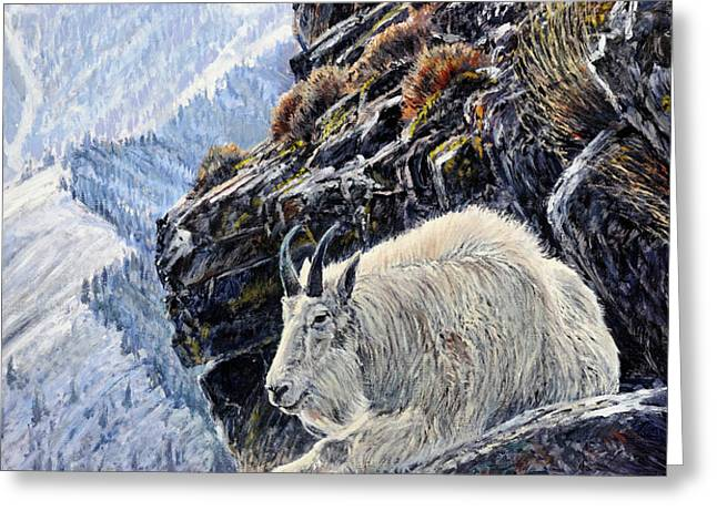Sentinel of the Canyon Greeting Card by Steve Spencer