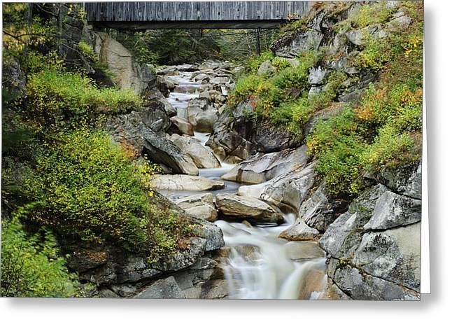 Covered Bridge Greeting Cards - Sentinel Pine Covered Bridge Greeting Card by Luke Moore