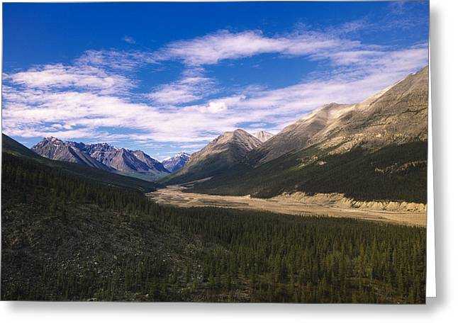 British Royalty Greeting Cards - Sentinel Range Near Muncho Pass Rocky Greeting Card by Kevin Smith