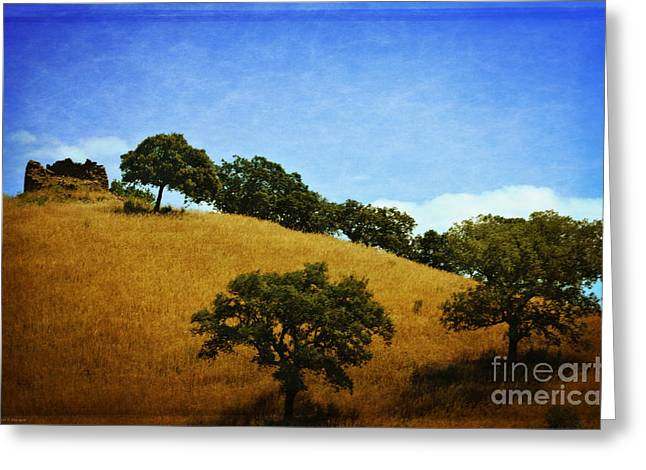 Still Standing Greeting Cards - Sentinel Still Standing Greeting Card by Mary Machare