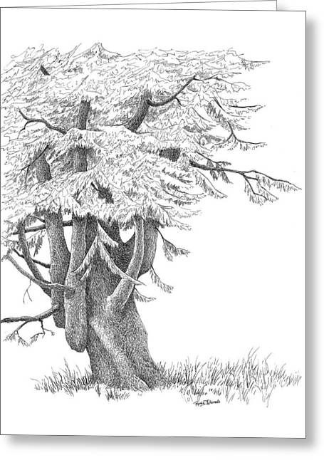 Gnarled Drawings Greeting Cards - Sentinel Tree Greeting Card by Renee Forth-Fukumoto