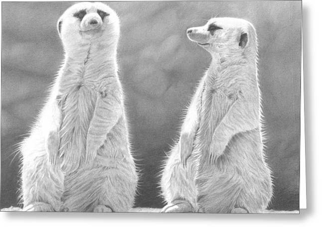 Meerkat Drawings Greeting Cards - Sentinels Greeting Card by Laura Rohlfing