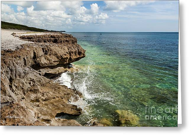 Tropical Oceans Greeting Cards - Sentinels of the Seashore Greeting Card by Michelle Wiarda