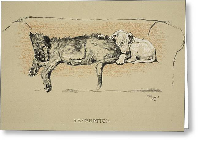 Separation, 1930, 1st Edition Greeting Card by Cecil Charles Windsor Aldin
