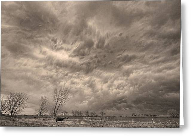 Storm Prints Greeting Cards - Sepia Angry Skies Greeting Card by James BO  Insogna