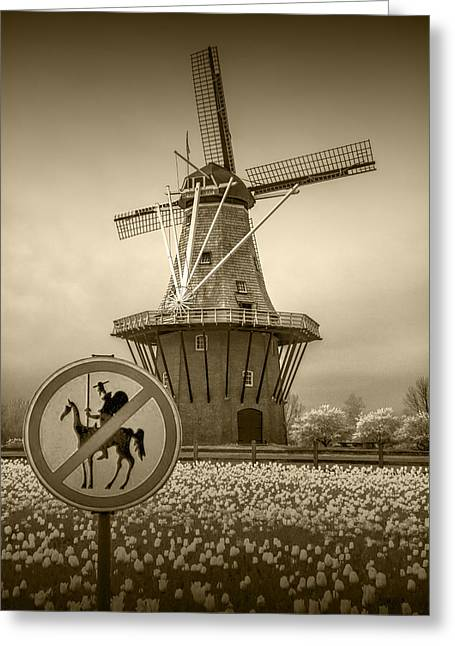 Sepia Colored No Tilting At Windmills Greeting Card by Randall Nyhof