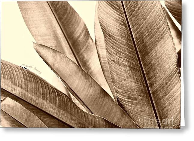 Sepia Leaves Greeting Card by Cheryl Young