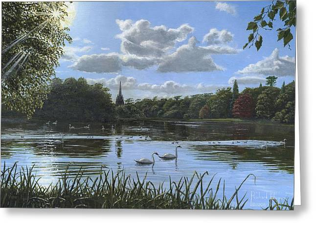 Swans... Greeting Cards - September Afternoon in Clumber Park Greeting Card by Richard Harpum
