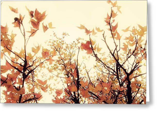 Autumn Prints Greeting Cards - September Song Greeting Card by Amy Tyler