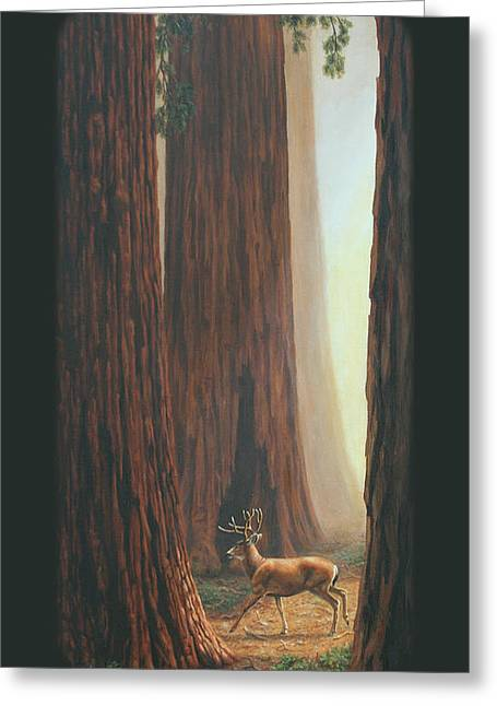 Sequoia Blacktail Deer Phone Case Greeting Card by Crista Forest