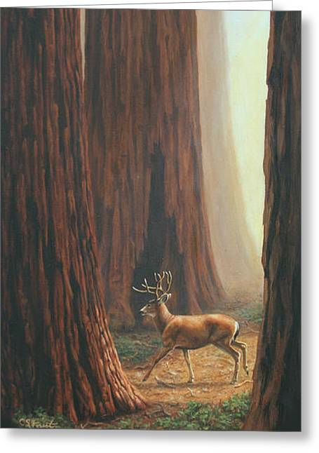 Giant Sequoia Greeting Cards - Sequoia Blacktail Deer Phone Case Greeting Card by Crista Forest