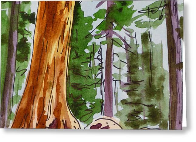 Sequoia Park - California Sketchbook Project  Greeting Card by Irina Sztukowski