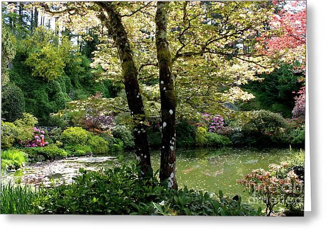 Lovely Pond Greeting Cards - Serene Garden Retreat Greeting Card by Carol Groenen