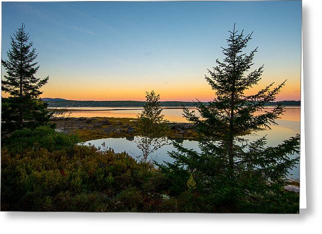 Somes Sound Greeting Cards - Serene Sunset Greeting Card by Constance Sanders