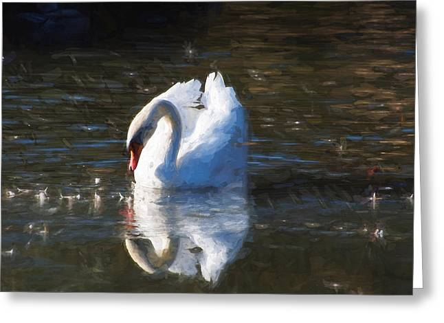 Van Gogh Style Photographs Greeting Cards - Serene swan Greeting Card by Susan Tinsley