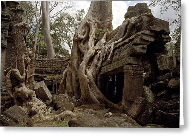 Temple Of Ta Prohm Greeting Cards - Serene Ta Prohm Greeting Card by Shaun Higson