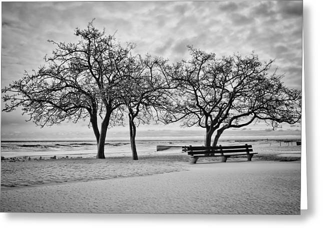 Lake Michgan Greeting Cards - Serene wintry lakefront scene Greeting Card by Sven Brogren