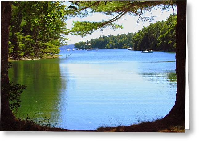 Maine Shore Greeting Cards - Serenity at Maine Cove Greeting Card by Patty Gross