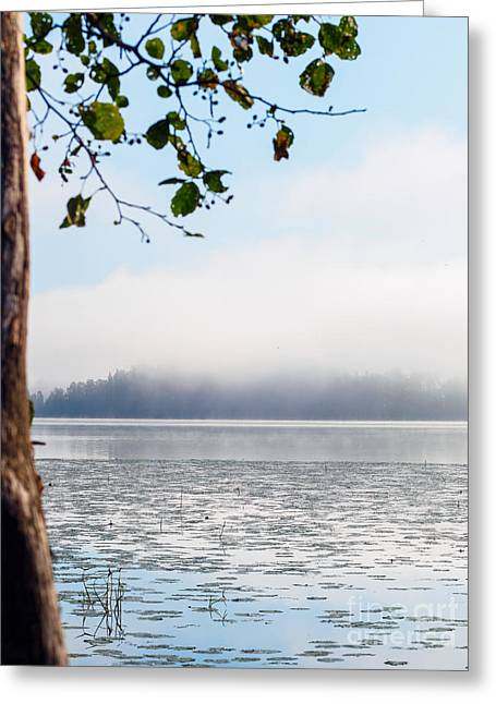 Adjectives Greeting Cards - Serenity at the Lake Greeting Card by Ismo Raisanen
