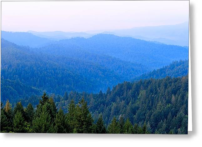 Northern California Landscapes Greeting Cards - Serenity Blue - Misty Morning Landscape - Northern California Greeting Card by Mark Tisdale