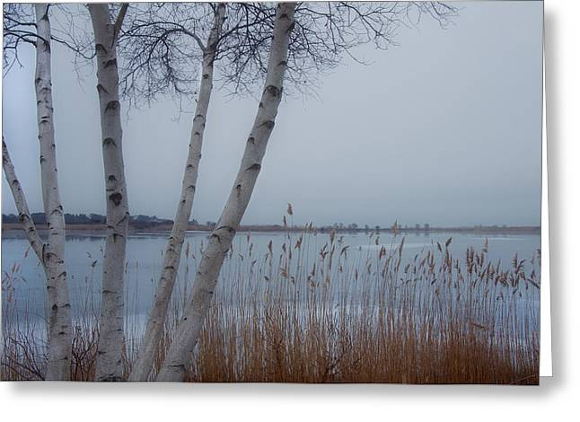 New England Winter Scene Greeting Cards - Serenity by the Sea Greeting Card by Joann Vitali