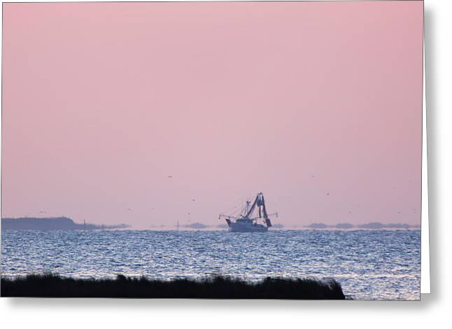 Fishing Boats Greeting Cards - Serenity in Pink Greeting Card by Paula OMalley