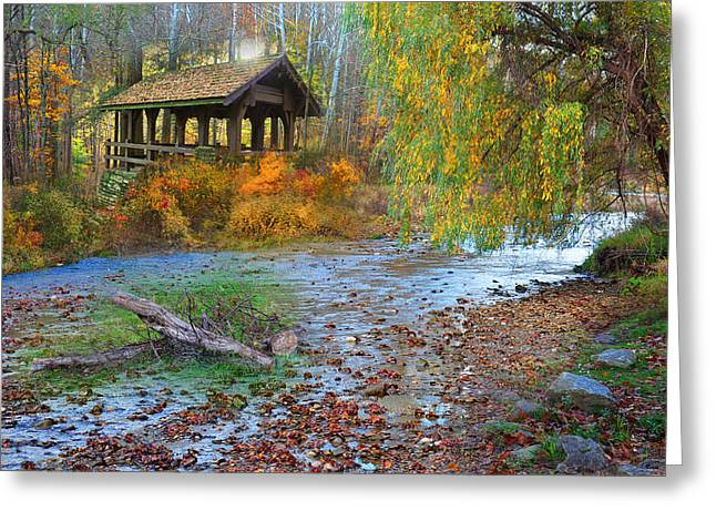 Shed Digital Art Greeting Cards - Serenity In The Woods Greeting Card by Reese Lewis
