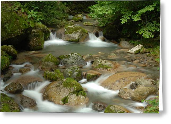 Stream Greeting Cards - Serenity Is a Brook Greeting Card by Aaron S Bedell